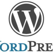 WordPress设置Proxy更新主题和插件