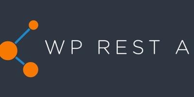 WordPress启动Restful Api验证
